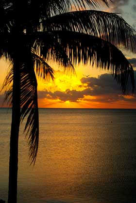Tahiti Tropical Sunset